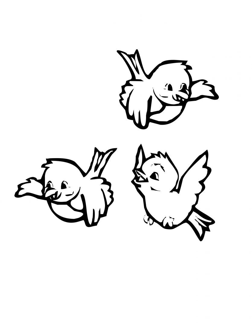 Imagenes Pajaritos Para Pintar Jpg on Coloring Page Bird In Nest
