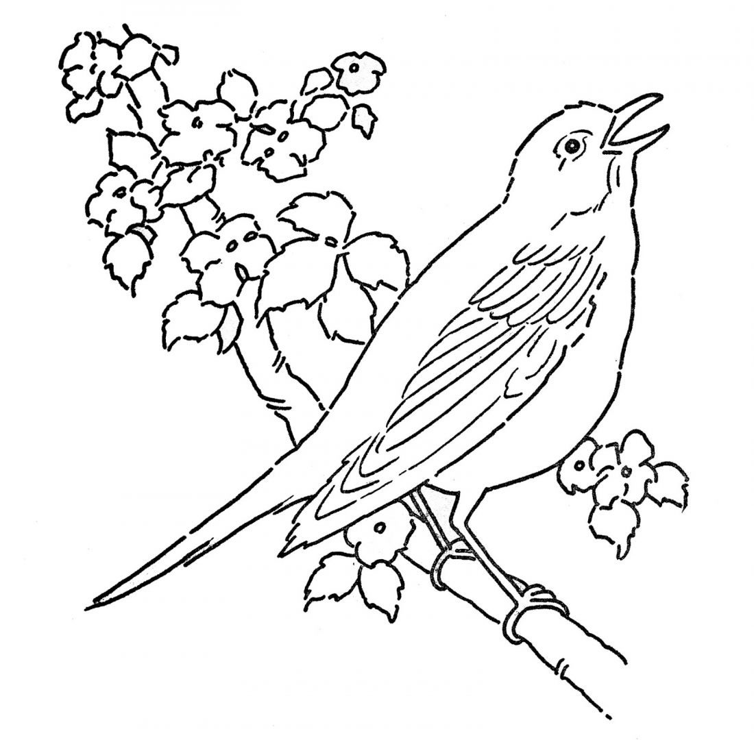 Line Art Free : Free coloring pages of bird cage